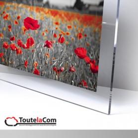 Panneaux en plexi incolore 10mm