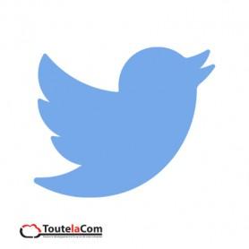 Pages pros sur Twitter